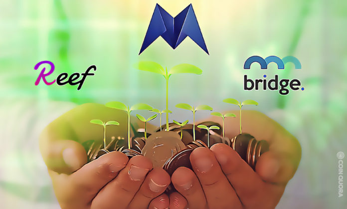 MRPH REEF BMI — Three Underrated Altcoins on The Rise